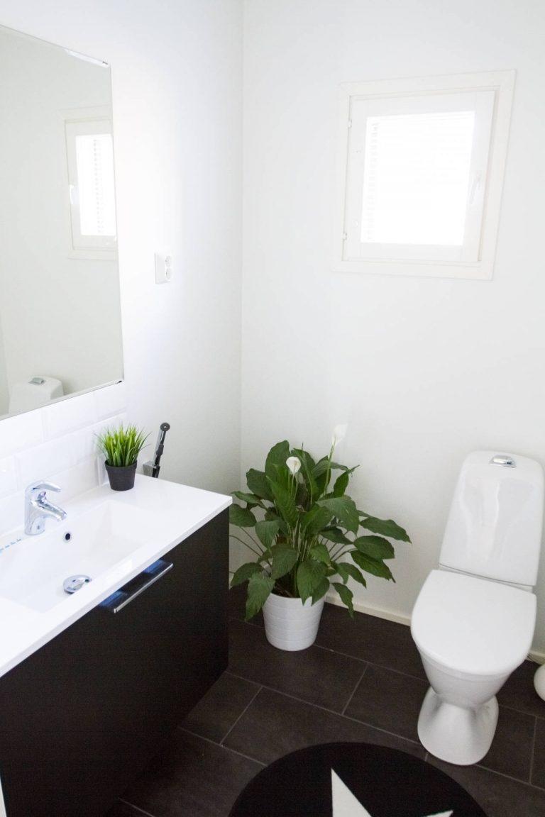 Viherkasvit tuovat ilmettä toilettiin